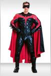 Authentic Robin Costume