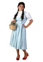 Adult Dorothy Dress
