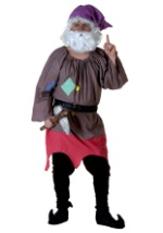 Professor Dwarf Costume