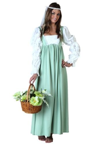 Womens Renaissance Fair Gown