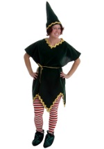 Professional Christmas Elf Costume