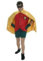 Adult Robin Costume Rental