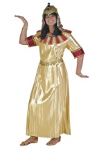 Adult Egyptian Princess Costume