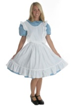 Womens Alice Costume
