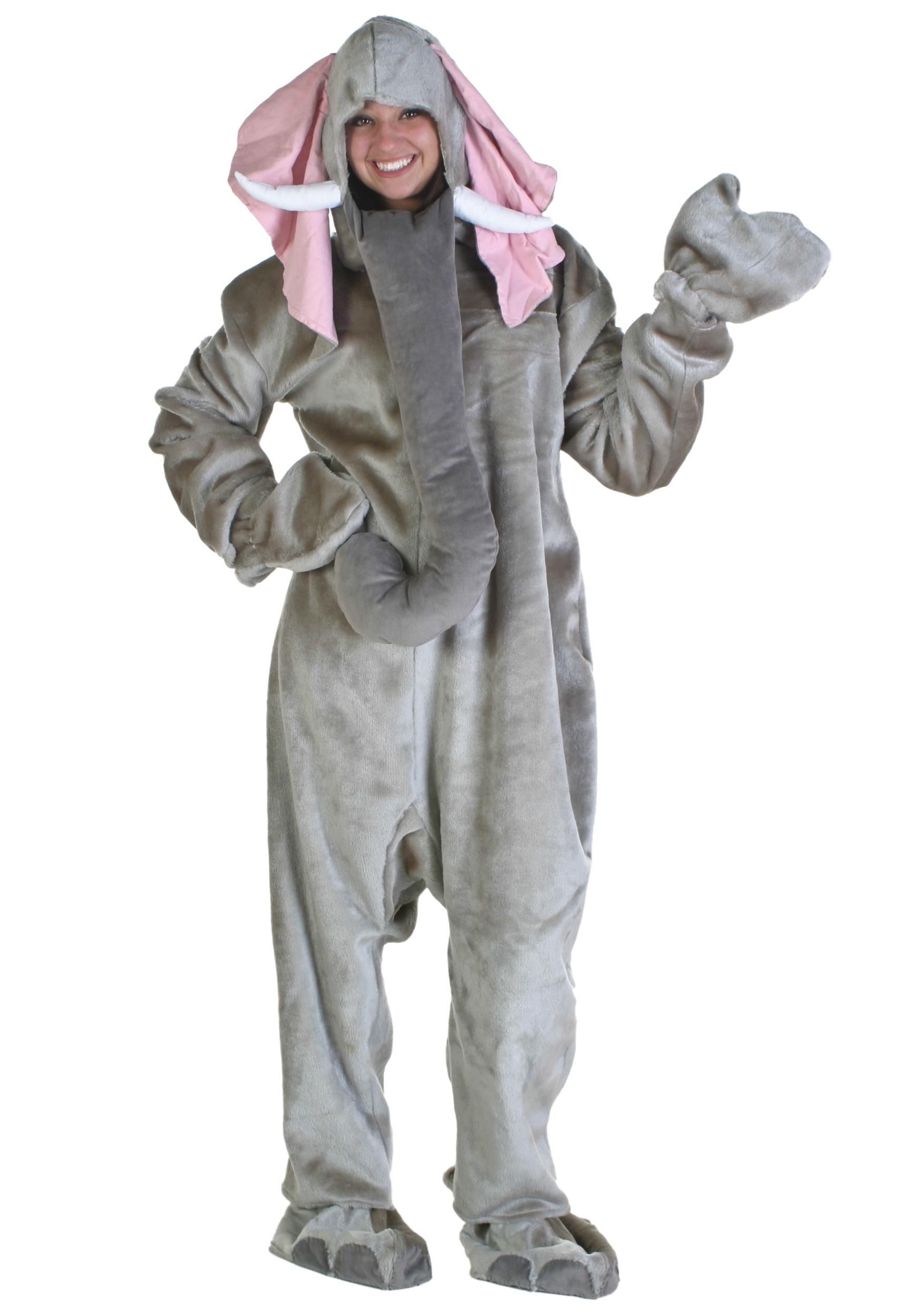 Adult costume rental