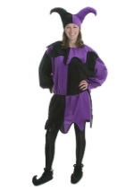 Adult Court Jester Costume