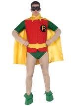 Classic Robin Costume